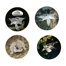 Flying lSquirrel Magnets: 4 Squirrels 4 your Fridge or Collection-A Great Gift