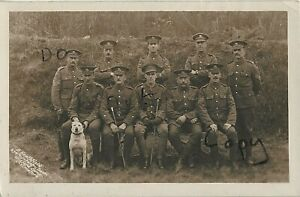 WW1 Officer soldier group 19th Queens Royal West Surrey Regiment Lowestoft