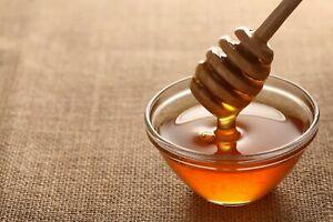 Yemeni Sidr Pure RAW Honey from Wadi Dho'an  Grade A+ by Tawakkal Distributors