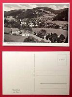 AK TODTMOOS bei Freiburg im Breisgau um 1930 Ortsansicht   ( 5780