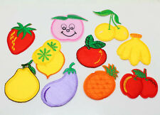 10pcs New Embroidered Cloth Iron On Patch Sew Motif Applique fruit