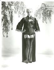 Janet Leigh Leggy in Garter Belt 8x10 photo D3119