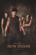 TWILIGHT MOVIE POSTER ~ NEW MOON WOLF PACK 24x36 Taylor Lautner Jacob