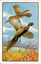 Pheasants Birds Single Swap Playing Card Vintage