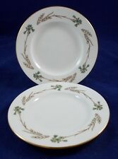 Minton GLENGARRY 2 Salad Plates S687 LIGHTLY USED GOOD CONDITION