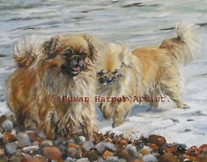 SALE Tibetan Spaniel Signed Dog Print by Susan Harper Unmounted