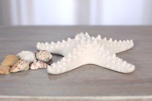 Ceramic Starfish Bathroom Marine Home Decor Gift Homewares 20cms NEW