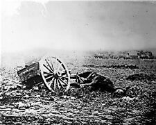 New 8x10 Civil War Photo: Shelled Caisson & Mule after Battle of Gettysburg