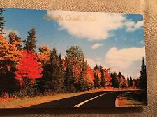 Unused Chrome Post Card – Canada Creek , Michigan – Autum road-1955