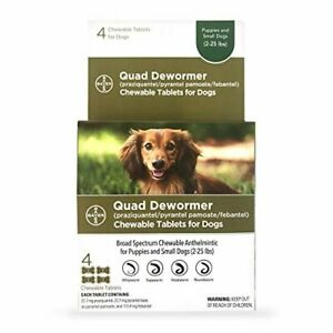 Bayer Chewable Quad Dewormer for Small Dogs, 2-25 lbs, 4 Chewable Tablets