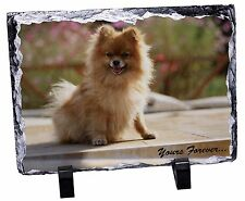 Pomeranian Dog 'Yours Forever' Photo Slate Christmas Gift Ornament, AD-PO89ySL
