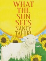 What the Sun Sees, What the Moon Sees by Nancy Tafuri