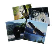 Bear Wolf Deer Eagle Coasters Set (4) Forest Pack Ceramic New Wildlife
