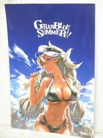 REDJUICE Art Works Illustration GRANBLUE SUMMER Book Booklet Ltd *