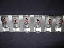Kieliszki-set of 6 shot glasses Polska-Poland,WESOLE