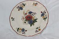 2 assiettes  SARREGUEMINES AGRESTE 21 cm side plate