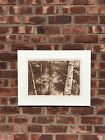 Gorgeous Original Harriet Huff Signed Etching. Forest. 6/100 Limited Edition.