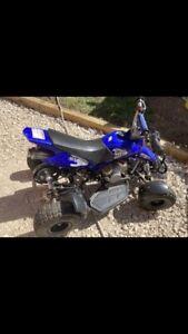 Kids 50cc QUAD BIKE Mini Moto quad bike.