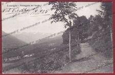 VERBANIA CRAVEGGIA 57 VAL VIGEZZO Cartolina viaggiata 1925