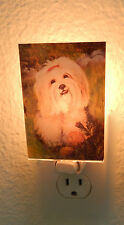 NIGHT LIGHT Best Friends by Ruth Maystead - Lhasa Apso dog-acrylic