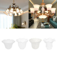 Replacement Glass Shades for Wall Light and Ceiling Fan Lights