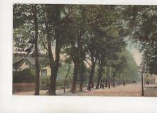The Causeway Bishops Stortford Hertfordshire 1905 Postcard Maxwell 511b