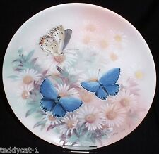On Gossamer Wings ~ 6. Bradex Schmetterling Sammelteller EASTERN TAILED BLUES