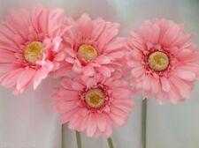 Lighted Arrangements, Centerpieces&Swags Flowers