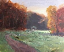 Original Oil Painting Brown County Indiana Farm Morning Light Hills 8x10 Haigh