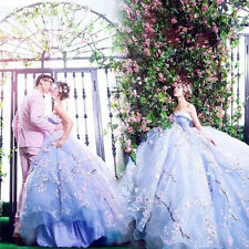 Blue Applique Beaded Train Wedding Dress Quinceanera Formal Pageant Gown Shoot