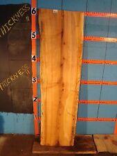 """#9226   1 5/8"""" THICK  black line spalted maple live edge slab"""