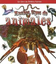 Muchos Tipos de Animales / Many Kinds of Animals (Que Tipo De Animal-ExLibrary