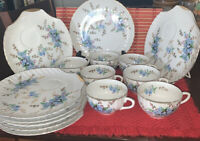 Antique Lovely Eggshell ~Forget-Me-Not~   16 Pcs Hand Painted Fine China