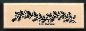 PINE FIR BERRIES Winter TREE BRANCH Landscape Nature Stampin Up! RUBBER STAMP