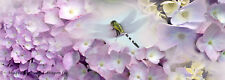 Hydrangeas with dragonfly,   bookmark, Maine -  hand made #12