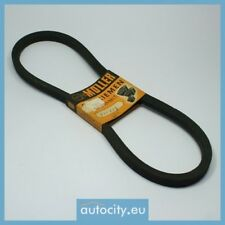 Moller 17 X 875 V-Ribbed Belts/Courroie trapezoidale a nervures/Poly V-riem