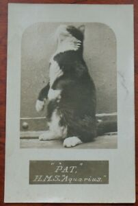 """""""PAT"""" Ships CAT, H.M.S. Aquarius RP card, unposted, light middle right edge"""