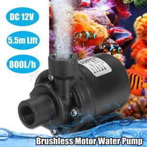 12V 800L/H 5.5M Lift Quiet Mini Brushless Motor Submersible Pool Water Pump