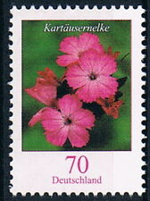 2529 ** , BRD 2006, Blumen, Kartäusernelke