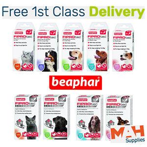 Beaphar FIPROtec Spot On Dog Flea Cat Flea FIPROtec Combo Kills Fleas & Ticks