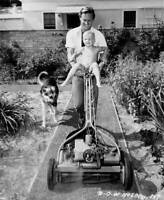 American Actor William Holden Working In His Garden In The San OLD PHOTO