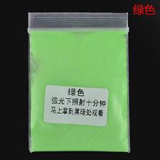 10g Super Bright Glow in the Dark Fluorescent Powder Sand Glow Panting Pigment D