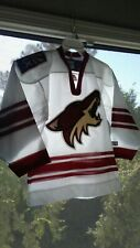 NHL Hockey Phoenix Coyotes CCM Jersey Size YOUTH Small 17 x 23 Nice Clean Shape!