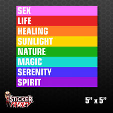Gay Pride Flag Color Meaning Bumper Sticker Car Decal LGBT Gift Love Lesbian Ace