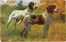 Dogs Chasse. Hunting