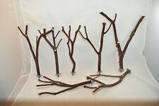 Manzanita Bird Perches Set of Seven w/ hardware Multibranch * Peely & Smooth