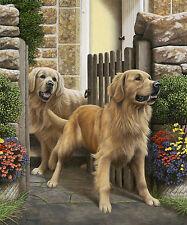 Nigel Hemming RECEPTION COMMITTEE Golden Retrievers, Retrievers Goldies Gun Dog