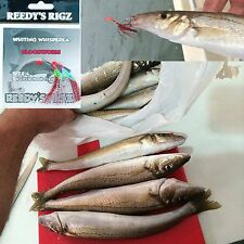 5 Whiting Rig  Fishing Rigs Tied Paternoster Flasher Rig Bait Lures Tackle 30lb