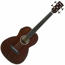 Ibanez AVNB1FE-BV Fretless Electro-Acoustic Bass - Brown Violin