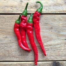 Cayenne pepper Plugs